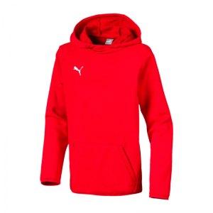 puma-liga-casuals-kapuzensweatshirt-kids-rot-f01-teamsport-textilien-sport-mannschaft-655636.jpg