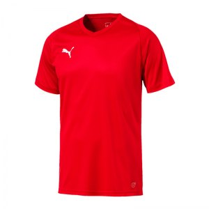 puma-liga-core-trikot-kurzarm-f01-mannschaft-verein-teamsport-ausstattung-703509.jpg