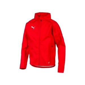 puma-liga-training-rain-jacket-kids-f01-regenjacke-jacke-regen-team-mannschaftssport-ballsportart-training-workout-655316.jpg