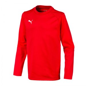 puma-liga-training-sweatshirt-kids-rot-f01-teampsort-mannschaft-ausruestung-655670.jpg