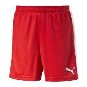 puma-pitch-short-mit-innenslip-hose-kurz-kindershort-teamwear-teamsport-vereinsausstattung-kids-children-kinder-rot-f01-702075.jpg