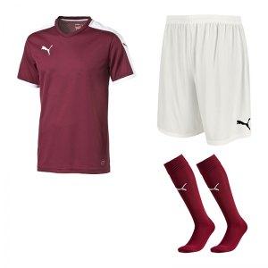 puma-pitch-e-trikotset-rot-f09-team-mannschaft-sport-bekleidung-spiel-match-teamwear-702070-701945-702565.jpg
