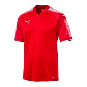puma-striker-trikot-kurzarm-rot-weiss-f01-herren-fussball-kurzarm-trikot-teamsport-703065.jpg