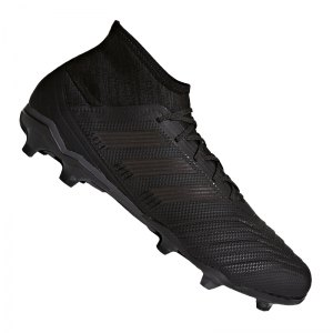 adidas-predator-18-2-fg-schwarz-weiss-fussball-schuhe-nocken-rasen-kunstrasen-soccer-sportschuh-db1996.jpg