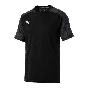 puma-cup-sideline-t-shirt-schwarz-f03-fussball-teamsport-textil-t-shirts-656049.jpg