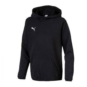 puma-liga-casuals-kapuzensweatshirt-kids-f03-teamsport-textilien-sport-mannschaft-655636.jpg
