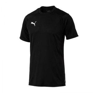 puma-liga-training-t-shirt-schwarz-f03-shirt-team-mannschaftssport-ballsportart-training-workout-655308.jpg
