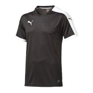puma-pitch-shortsleeved-shirt-trikot-kurzarmtrikot-jersey-kindertrikot-teamwear-vereinsausstattung-kids-children-schwarz-f03-702070.jpg