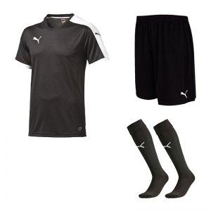 puma-pitch-e-trikotset-schwarz-f03-team-mannschaft-sport-bekleidung-spiel-match-teamwear-702070-701945-702565.jpg