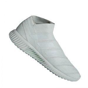 adidas-nemeziz-tango-18-1-tr-silber-fussball-soccer-sport-shoe-trainer-strasse-freizeit-ac7356.jpg