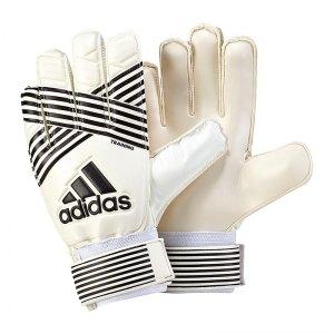 adidas-ace-training-torwarthandschuh-weiss-schwarz-equipment-gloves-keeper-torspieler-torwart-handschuh-bq4582.jpg