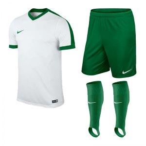 nike-striker-iv-trikotset-teamsport-ausstattung-matchwear-spiel-kids-f102-725974-725988-507819.jpg