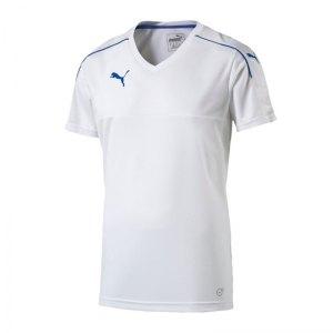 puma-accuracy-trikot-kurzarm-jersey-teamsport-vereine-kids-kinder-weiss-blau-f13-702214.jpg