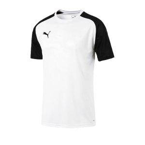 puma-cup-training-core-t-shirt-weiss-f04-fussball-teamsport-textil-t-shirts-656027.jpg