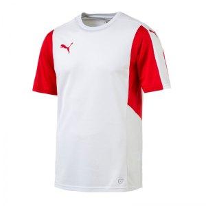 puma-dominate-trikot-kurzarm-f12-kids-shortsleeve-shirt-jersey-spiel-training-teamsport-703063.jpg