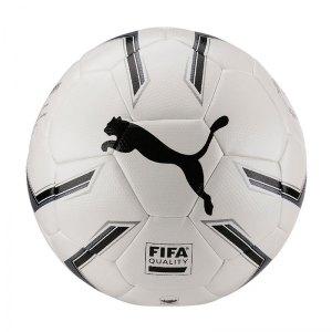puma-elite-2-2-fusion-trainingsball-weiss-f01-equipment-fussbaelle-82814.jpg