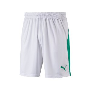 puma-liga-short-weiss-gruen-f15-teamsport-textilien-sport-mannschaft-703431.jpg
