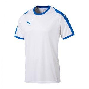 puma-liga-trikot-kurzarm-kids-weiss-blau-f12-kinder-sport-trikot-team-mannschaftssport-ballsportart-703418.jpg