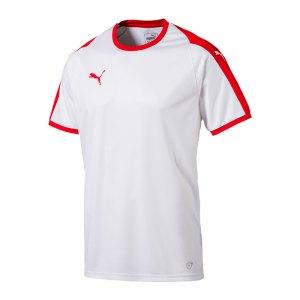 puma-liga-trikot-kurzarm-kids-weiss-rot-f11-kinder-sport-trikot-team-mannschaftssport-ballsportart-703418.jpg
