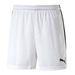 puma-pitch-short-mit-innenslip-hose-kurz-herrenshort-teamwear-teamsport-vereinsausstattung-men-herren-maenner-weiss-f04-702075.jpg