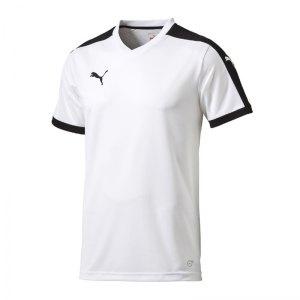 puma-pitch-shortsleeved-shirt-trikot-kurzarmtrikot-jersey-herrentrikot-teamwear-vereinsausstattung-men-herren-weiss-f04-702070.jpg