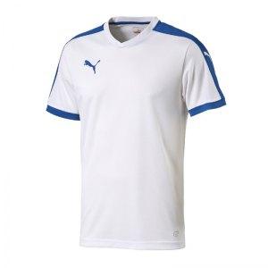 puma-pitch-shortsleeved-shirt-trikot-kurzarmtrikot-jersey-kindertrikot-teamwear-vereinsausstattung-kids-children-weiss-f13-702070.jpg