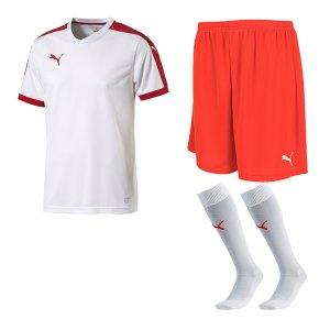 puma-pitch-e-trikotset-weiss-f12-team-mannschaft-sport-bekleidung-spiel-match-teamwear-702070-701945-702565.jpg