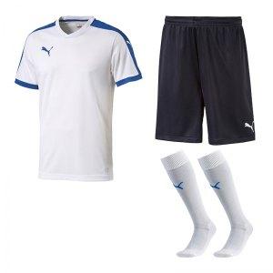 puma-pitch-e-trikotset-weiss-f13-team-mannschaft-sport-bekleidung-spiel-match-teamwear-702070-701945-702565.jpg