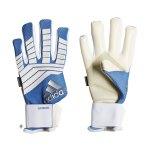 adidas Predator Super Cool TW-Handschuh - blau