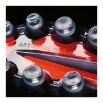 adidas COPA 17.1 AG Schwarz Rot - schwarz