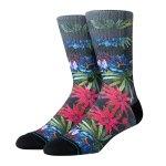 Stance Foundation Monteverde Socks Schwarz - schwarz