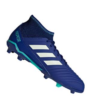 adidas-predator-18-3-fg-j-kids-blau-gruen-fussballschuhe-footballboots-naturrasen-firm-ground-nocken-soccer-cp9012.png