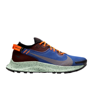 nike-pegasus-trail-2-gtx-running-blau-f600-cu2016-laufschuh_right_out.png