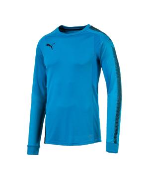 puma-gk-shirt-torwarttrikot-blau-schwarz-f62-torwart-goalkeeper-longsleeve-langarm-herren-men-maenner-703067.png