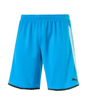 puma-gk-short-torwartshort-blau-schwarz-f62-torwart-goalkeeper-torspieler-short-hose-kurz-herren-men-maenner-703068.png