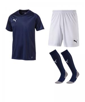 puma-trikotset-liga-core-blau-weiss-f06-trikot-short-stutzen-teamsport-ausstattung-703509.png