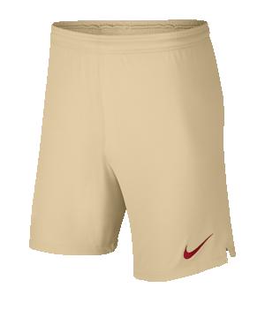 nike-galatasaray-istanbul-short-away-19-20-f248-replicas-shorts-international-aj5706.png