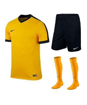nike-striker-iv-trikotset-teamsport-ausstattung-matchwear-spiel-f739-725893-725903-394386.png