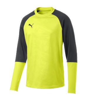 puma-cup-training-core-sweatshirt-gelb-f16-fussball-teamsport-textil-sweatshirts-656021.png