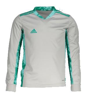 adidas-adipro-20-trikot-langarm-kids-grau-gruen-fussball-teamsport-textil-torwarttrikots-fi4197.png
