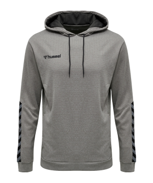 hummel-authentic-poly-hoody-grau-f2006-204930-teamsport_front.png