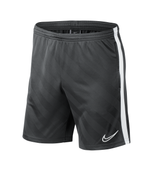 nike-academy-19-breathe-short-grau-f060-fussball-teamsport-textil-shorts-bq5810.png