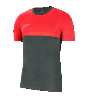nike-dri-fit-academy-pro-t-shirt-grau-rot-f079-fussball-teamsport-textil-t-shirts-bv6926.png