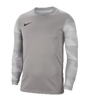 nike-dri-fit-park-iv-trikot-kurzarm-grau-f052-fussball-teamsport-textil-trikots-cj6066.png