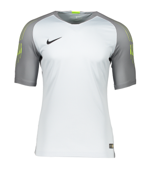 nike-promo-torwarttrikot-kurzarm-grau-f043-fussball-teamsport-mannschaft-ausruestung-textil-torwarttrikots-919759.png