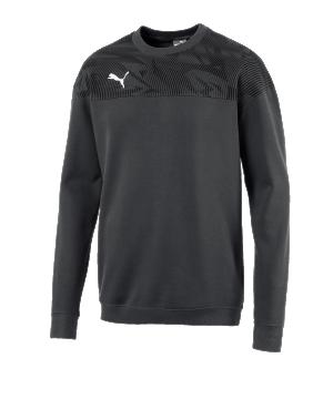puma-cup-casuals-sweatshirt-grau-weiss-f37-fussball-teamsport-textil-sweatshirts-656032.png