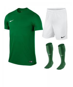 nike-park-vi-trikotset-teamsport-ausstattung-matchwear-spiel-f302-725891-725887-394386.png