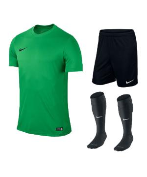nike-park-vi-trikotset-teamsport-ausstattung-matchwear-spiel-f303-725891-725887-394386.png