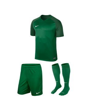 nike-trophy-iii-trikotset-gruen-f302-equipment-teamsport-fussball-kit-ausruestung-vereinskleidung-881484-trikotset.png