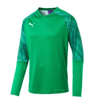 puma-cup-torwarttrikot-langarm-gruen-f43-fussball-teamsport-textil-torwarttrikots-703771.png